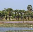 Zájezd Srí Lanka - sever, Jaffna a východní pláž