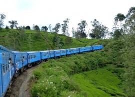 vlak přes čajové plantáže