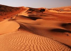 Poušť Wahiba sands, Omán