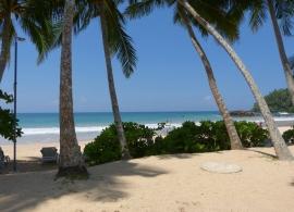 Paradise Beach Club Mirissa - pláž