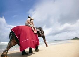 Vivanta By Taj Bentota - pláž
