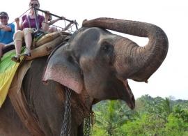 jízda na slonovi, Srí Lanka