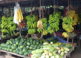 stánek s ovocem Srí Lanka