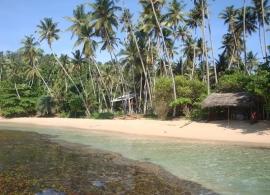 pláž Mirissa Srí Lanka