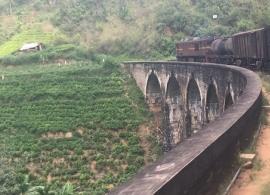 vlakem přes čajové plantáže
