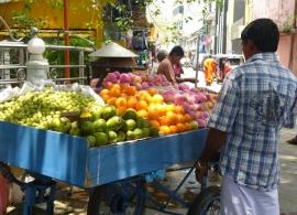 prodavač ovoce, Srí Lanka