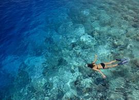 Dusit Thani Maledivy - šnorchlování