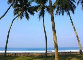 Pláž západního pobřeží, Srí Lanka