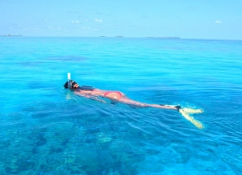Kuredu Island resort - šnorchlování na Kuredu