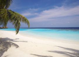 Lily Beach