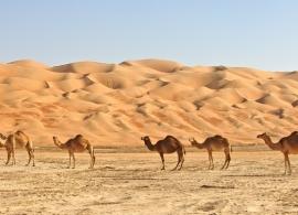 poušť Wahiba sands - Omán