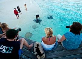 Reethi Beach resort - krmení rejnoků