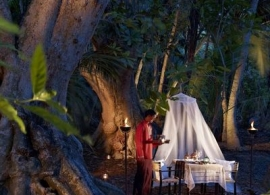 Shangri La´s Villingili Maledivy - večeře v džungli