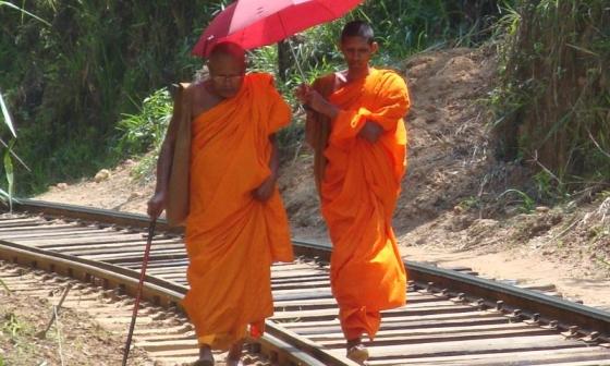 Srí Lanka pro každého - Srí Lanka levně