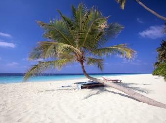 Filitheyo island resort -zájezd Maledivy