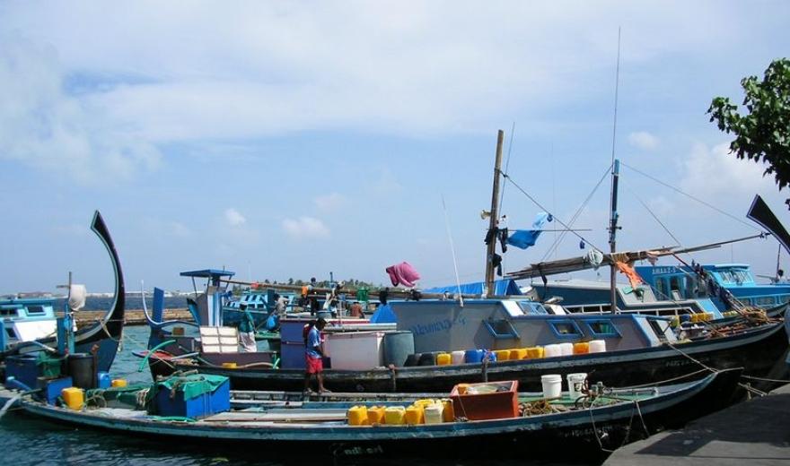 Přístav - Maledivy