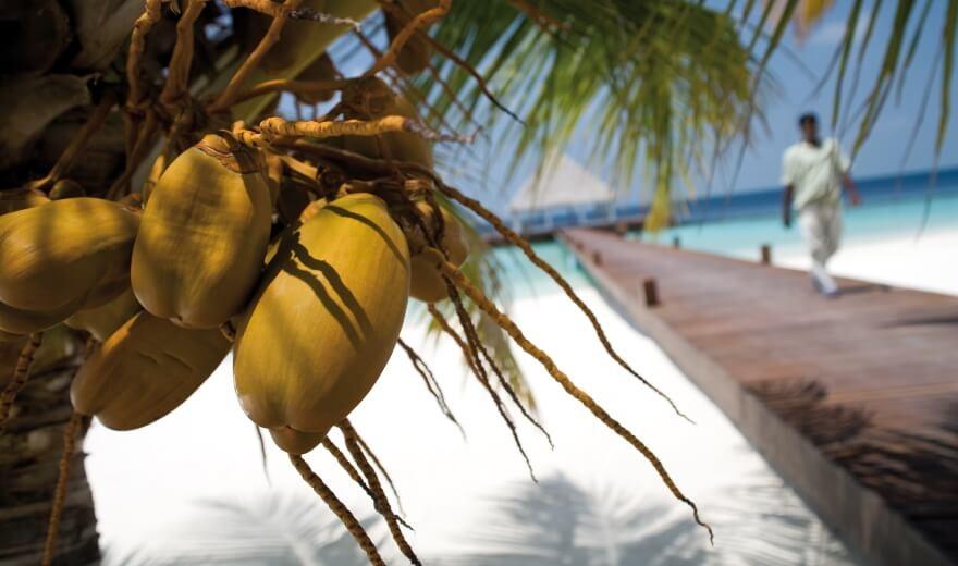 Daně na Maledivách a ostatní náklady