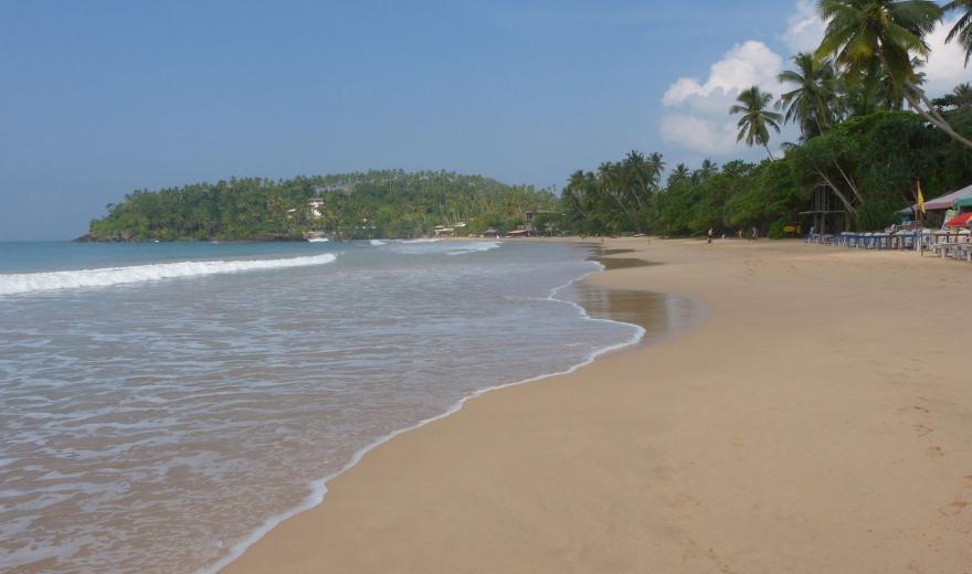 Komáři na Srí Lance